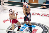 Mixed martial arts — Stockfoto