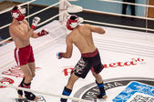 Mixed Martial Arts — Foto Stock