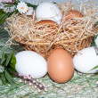 Stock Photo: Fresh eggs for feast of Easter.