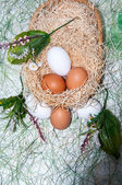 Fresh eggs for the feast of Easter. — Stock Photo