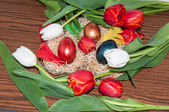 Easter egg and Tulips — Stock Photo