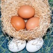 Stock Photo: Fresh eggs for feast of Easter..