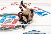 Mixed Martial Arts... — Stock Photo
