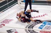 Mixed Martial Arts... — Foto Stock