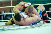 Volga Federal District Championship in mixed martial arts — Stock Photo