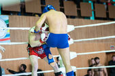 Volga Federal District Championship in mixed martial arts. — Stock Photo