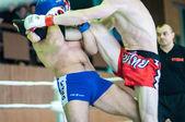 Volga Federal District Championship in mixed martial arts. — Stock Photo