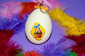 Easter egg and bird feathers. — Stock Photo