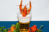 Boiled crayfish beer snack. .. — Stock Photo