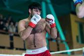 Volga federal bölgesi Şampiyonası karışık dövüş sanatları... — Stok fotoğraf