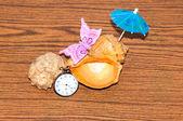 Раковины и часы — Стоковое фото