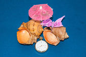Seashell and watches — Stok fotoğraf