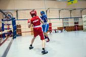 青少年拳击 — 图库照片
