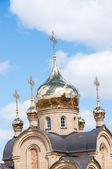 The Orthodox Chapel of Blessed — Stock Photo