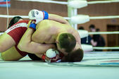 Volga Federal District Championship in mixed martial arts... ... — Foto de Stock