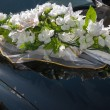 Wedding car decoration — Stock Photo #46839987