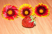 Strawberry and flower — Stock Photo