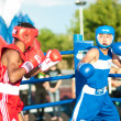 Постер, плакат: A boxing match Javier Ibanez Cuba and Malik Bajtleuov Russia Defeated Javier Ibanez