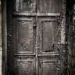Old door — Stock Photo #23411762