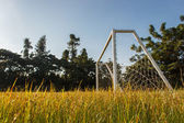 Abandoned soccer field — Stock Photo