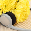 Yellow Chrysanthemum wjth headphone : music concept — Stock Photo #13883299