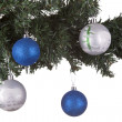 Christmas balls on a fir tree — Stock Photo #16290503