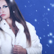 Beautiful woman in fur on a winter background — Stock Photo