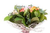 Beautiful flower macro shooting in studio — Stock Photo