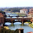 Royalty-Free Stock Photo: General view of Florence