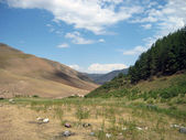 Mountainous summer landscape of Kyrgyzstan — Stock Photo