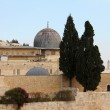 Al Aqsa and minaret — Stock Photo #18779431
