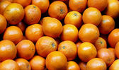 Bunch of fresh oranges on market. Selective focus — Stock Photo