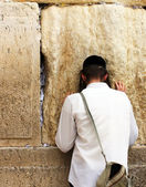 Unidentified young man praying at the Wailing wall (Western wall) — Stock Photo