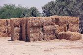 Bales of straws — Stock Photo