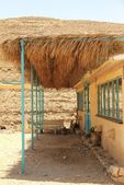 Capory of the farm buildings on the goat farm in the Negev Desert — Stockfoto