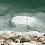 Dead sea. — Stock Photo #26541479