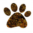 Paw print — Stock Photo