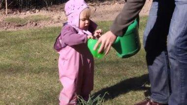 De planten water geven — Stockvideo