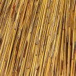 Thatched Roof of  Umbrella — Stock Photo
