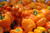 Yellow paprika, selective focus — Stock Photo
