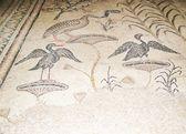 Mosaico antiguo tabgha, israel — Foto de Stock