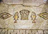 Antike mosaik tabgha, israel — Stockfoto