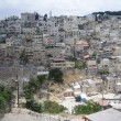 Village  Silwan — Stock Photo #42281039