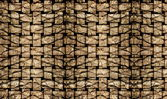 Palm tree bark texture matting background — Stock Photo