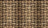 Palm tree bark texture matting background — Stock Photo