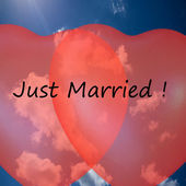 Just married! — 图库照片
