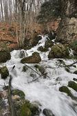 The swift river — Stockfoto