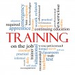 Training Word Cloud Concept — Stock Photo #12437571