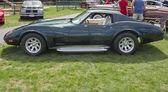 Vue latérale de corvette 1976 stingray — Photo