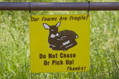 Fragile Fawns sign — Stock Photo